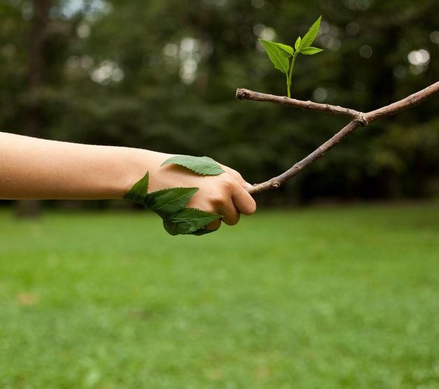 Compromisso real com o meio ambiente